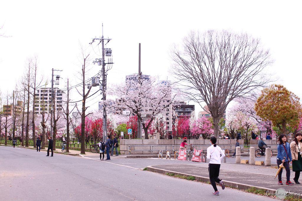 大阪城公園IMG_9636_20160404.jpg
