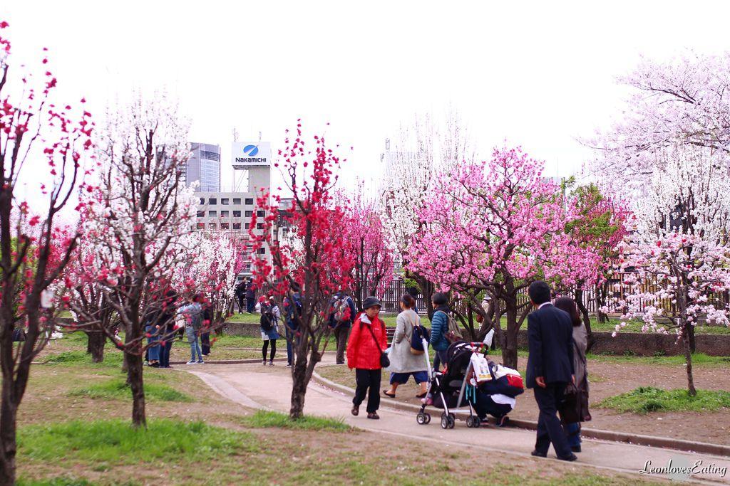 大阪城公園IMG_9638_20160404.jpg