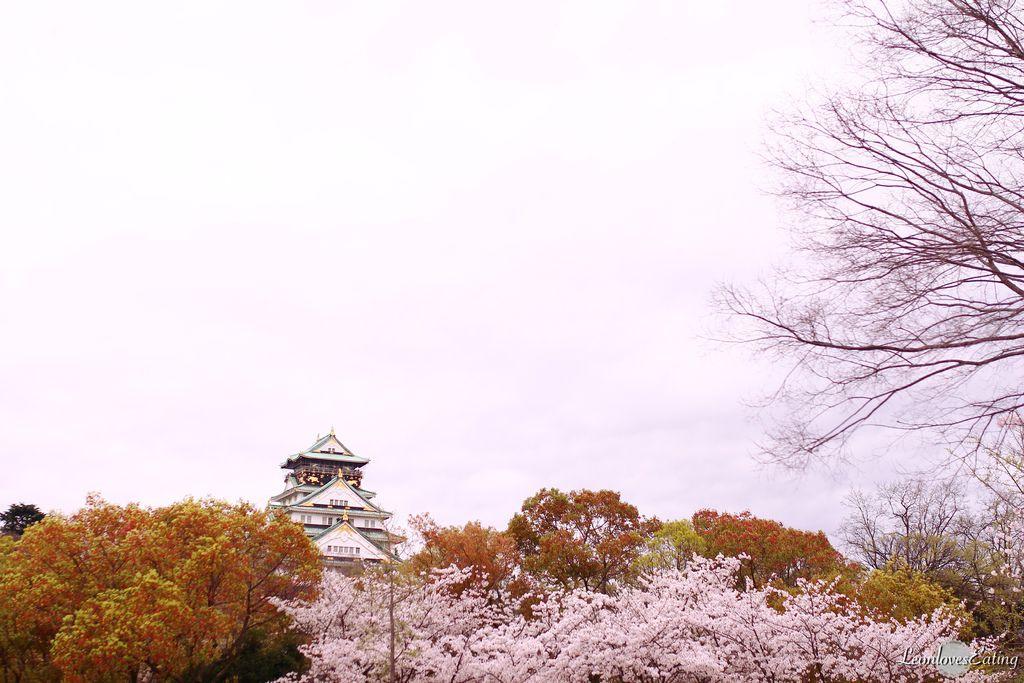 大阪城公園IMG_9666_20160404.jpg