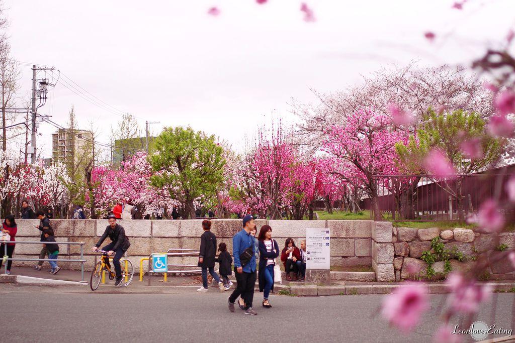 大阪城公園IMG_9672_20160404.jpg