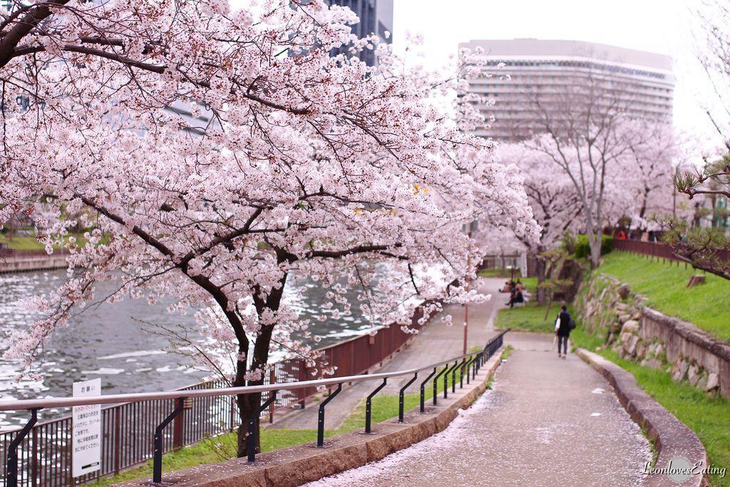 大阪城公園IMG_9667_20160404.jpg
