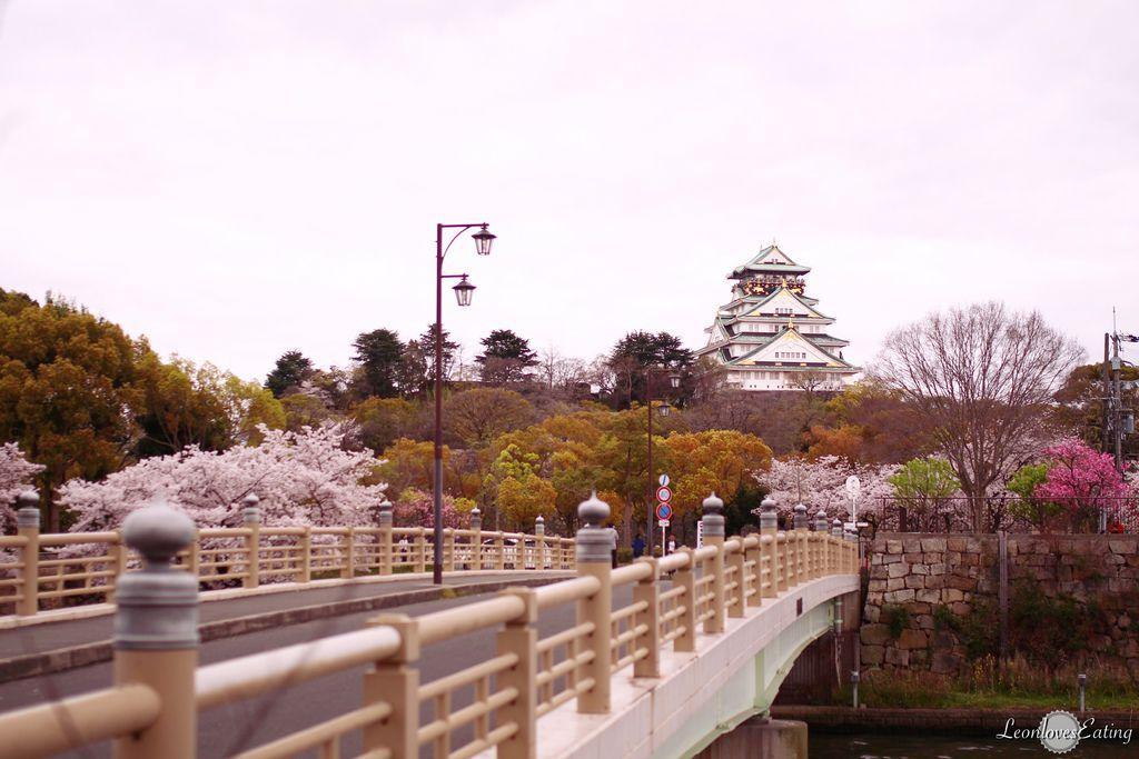 大阪城公園IMG_9685_20160404.jpg