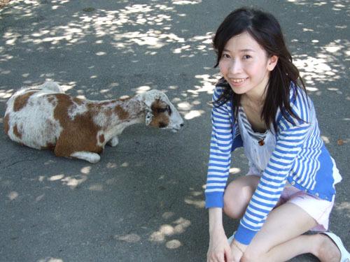 我和羊羊合照