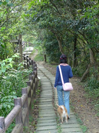 這條幽靜小路要先爬一段長長的樓梯才能到