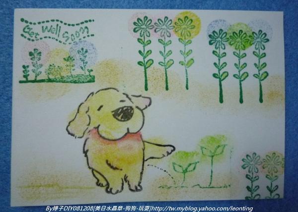 081208美日-狗狗2.JPG