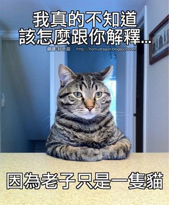 台南網頁設計,網站設計,網頁設計