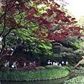 13-25中神苑景二.JPG