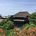 14-11遠眺清水寺.JPG