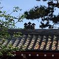 14-19金剛寺屋頂上真的有三隻猴.JPG