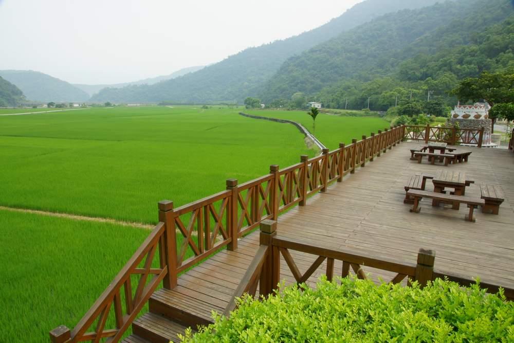 南安遊客中心稻田1.JPG