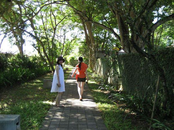 前往海灘的路上 (2).JPG