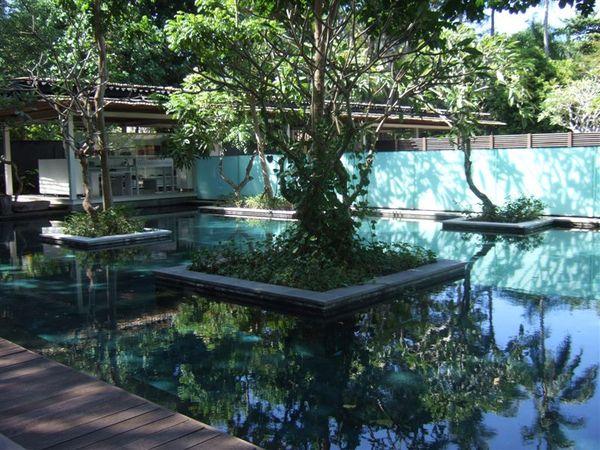 飯店景觀-公共泳池 (1).JPG