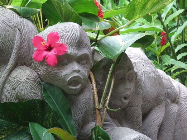 入口接待處-可愛的猴子雕像.JPG