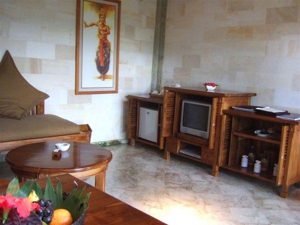 小客廳和小電視.JPG