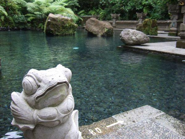 公共設施-游泳池2.JPG
