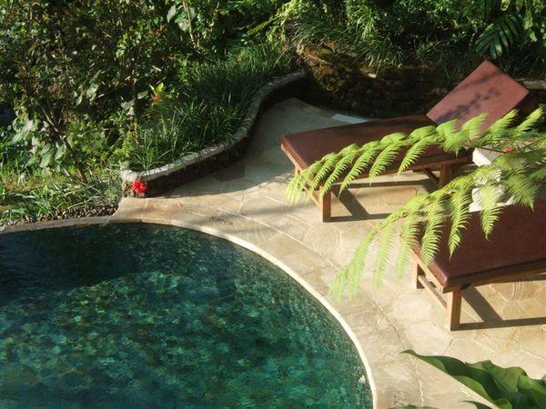 游泳池 (1).JPG