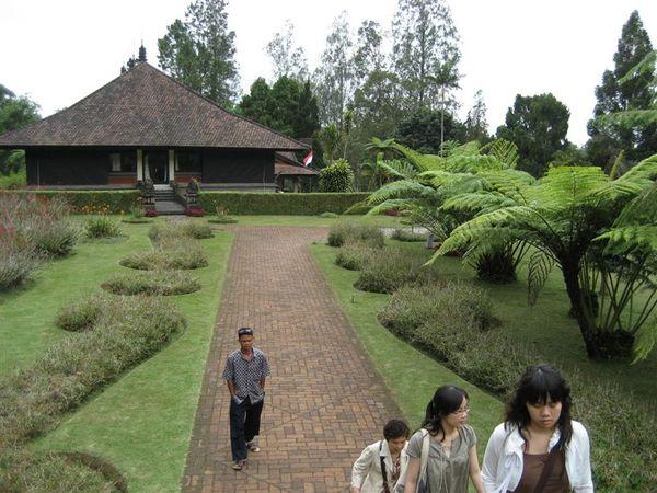植物園1 (2).JPG