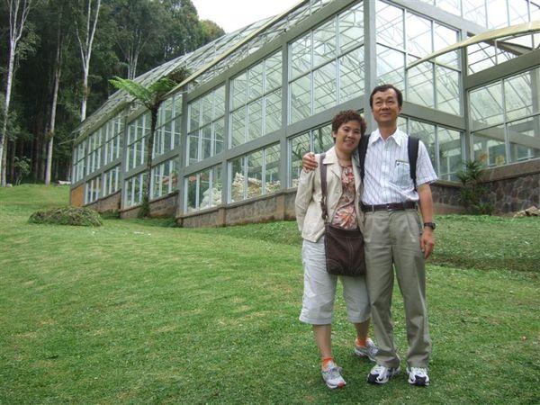 植物園1 (4).JPG