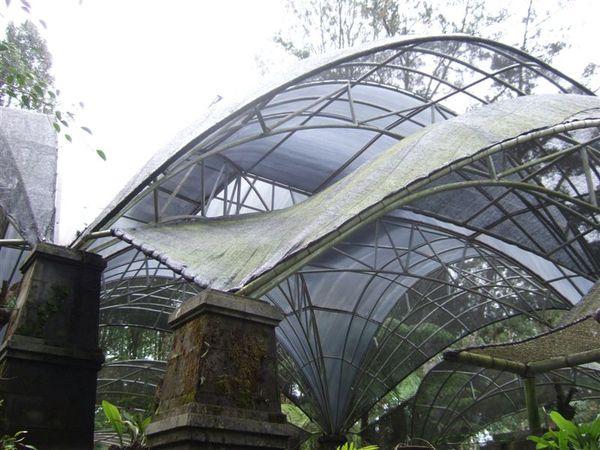 植物園1 (13).JPG