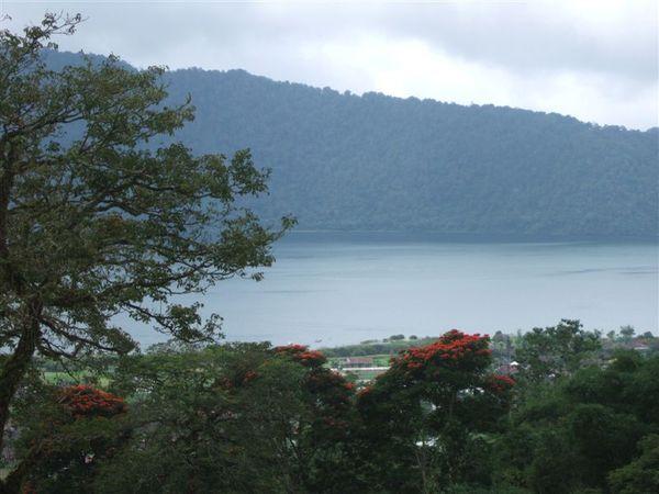 植物園 2-山上看湖 (5).JPG