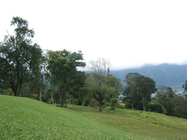 植物園 2-山上看湖 (12).JPG