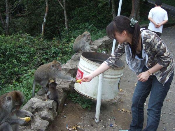 餵猴子 (2).JPG