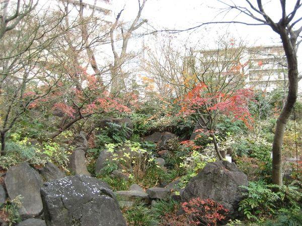 六本木 -毛利庭園 (3).JPG