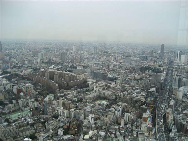 六本木-Tokyo city view 東京市景觀 (4).JPG