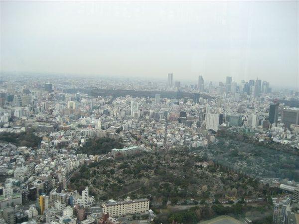六本木-Tokyo city view 東京市景觀 (5).JPG