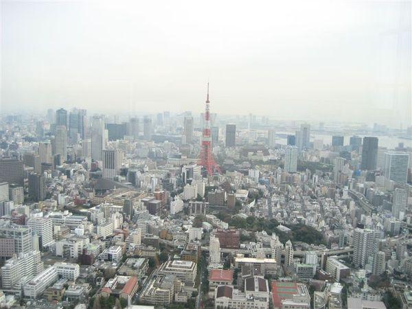 六本木-Tokyo city view 東京市景觀(1).JPG