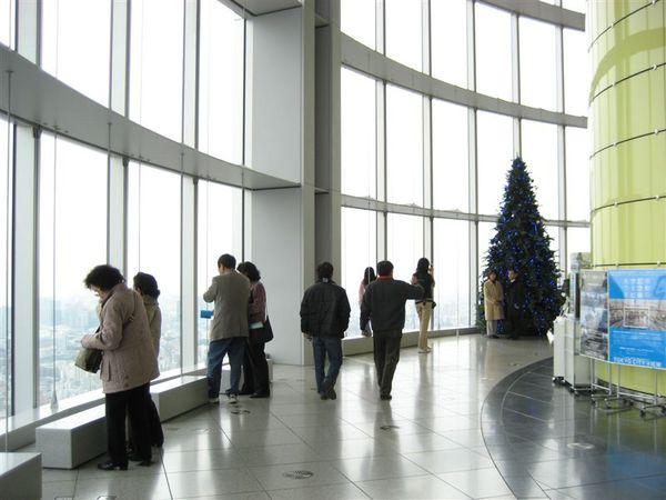 六本木-Tokyo city view(1).JPG
