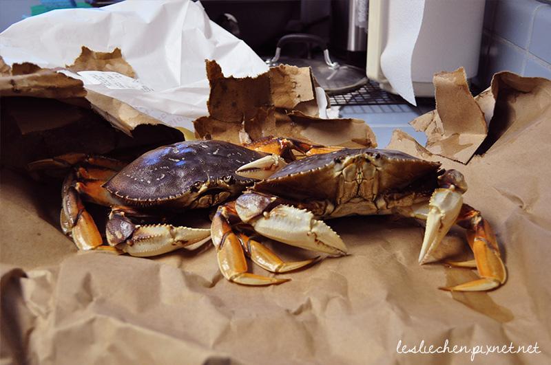 crab_3
