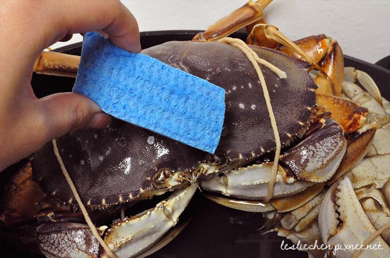 crab_8