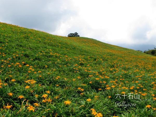 六十石山,台東美食.那界海 035