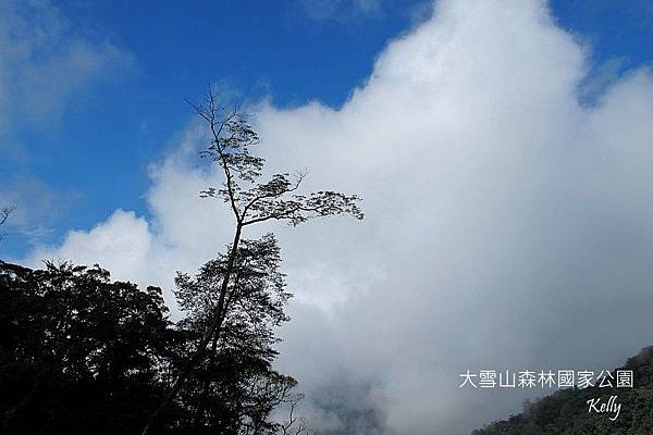 大雪山森林國家公園 2012-09-15 001