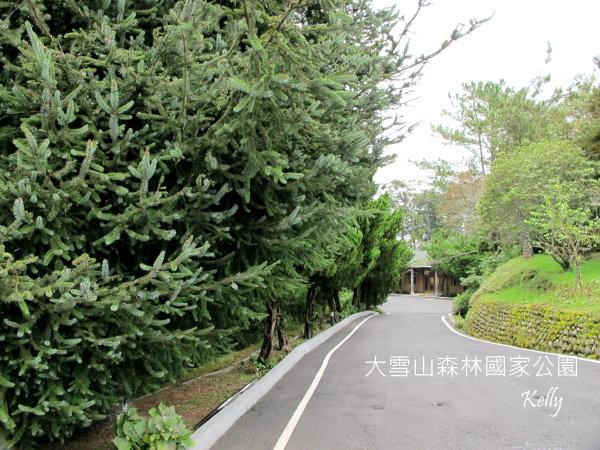 大雪山森林國家公園 2012-09-15 024