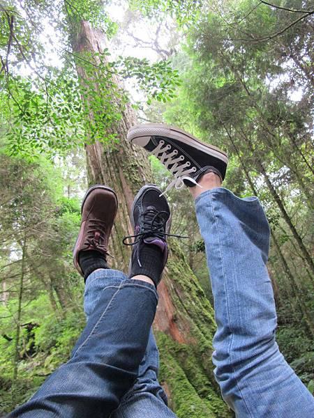 大雪山森林國家公園 2012-09-15 110
