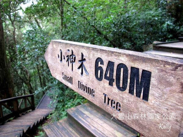 大雪山森林國家公園 2012-09-15 122