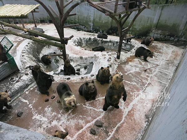 北海道初秋-尼克斯海洋公園 (34)