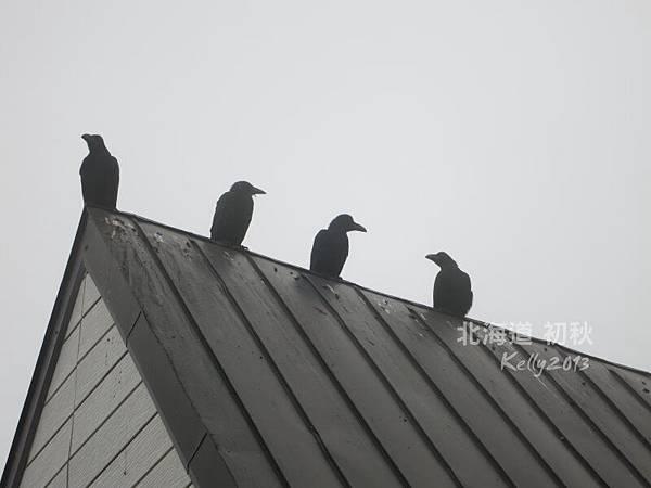 北海道初秋-尼克斯海洋公園 (30)