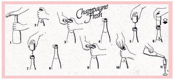 Wecomatic - Champagne Fresh 香檳保鮮瓶塞3