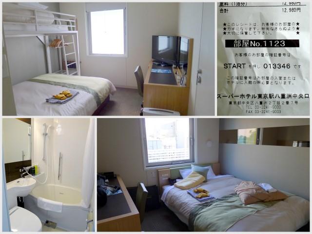 2013 Japan (4)