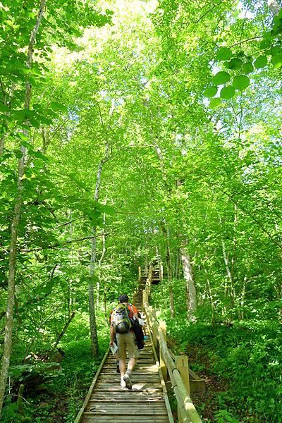 Latvia_16_Gaujas nacionālajā parkā.JPG
