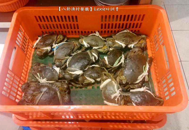 八卦漁村海鮮餐廳19