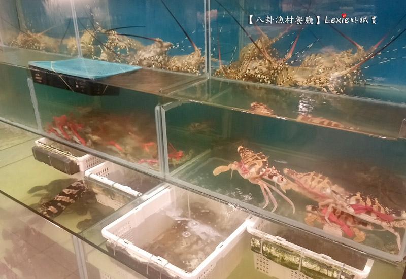 八卦漁村海鮮餐廳20