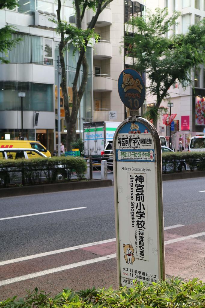 IMG_4678.JPG