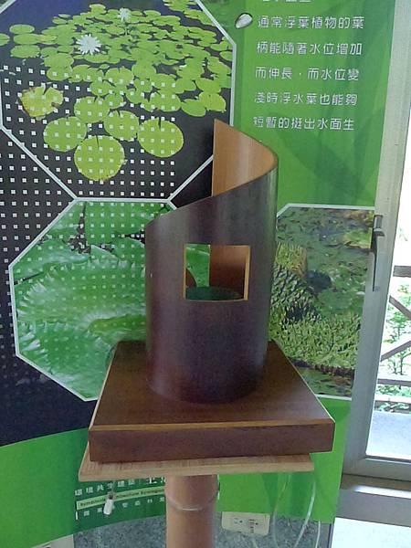 20130307巨竹- (2)