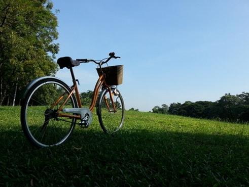 單車減肥1