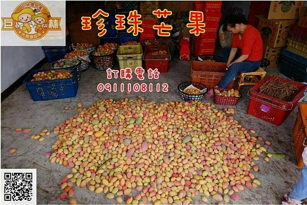 104.07.09寶來巨林農特產品_15