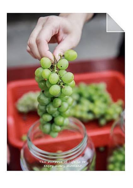 diy釀酒-10.jpg